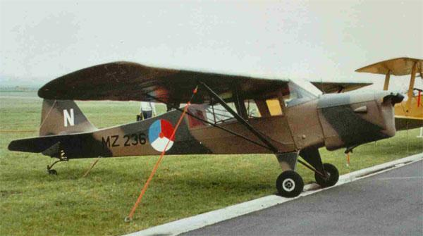 auster-mz236-kwj-author