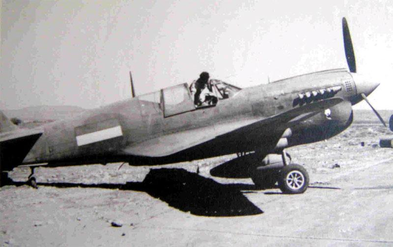 curtiss-p40n-sweers-archive